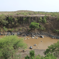 Water allocation in the Awash Awash sub basin, Ethiopia