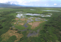 Ecologic and Hydrologic restoration of Laguna de Sonso, Valle del Cauca, Colombia